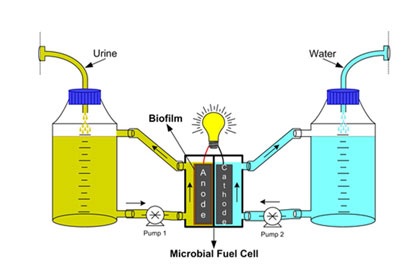 New fuel cells to turn urine into electricity