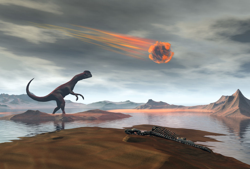 How other creatures survived a the impact that killed dinosaurs
