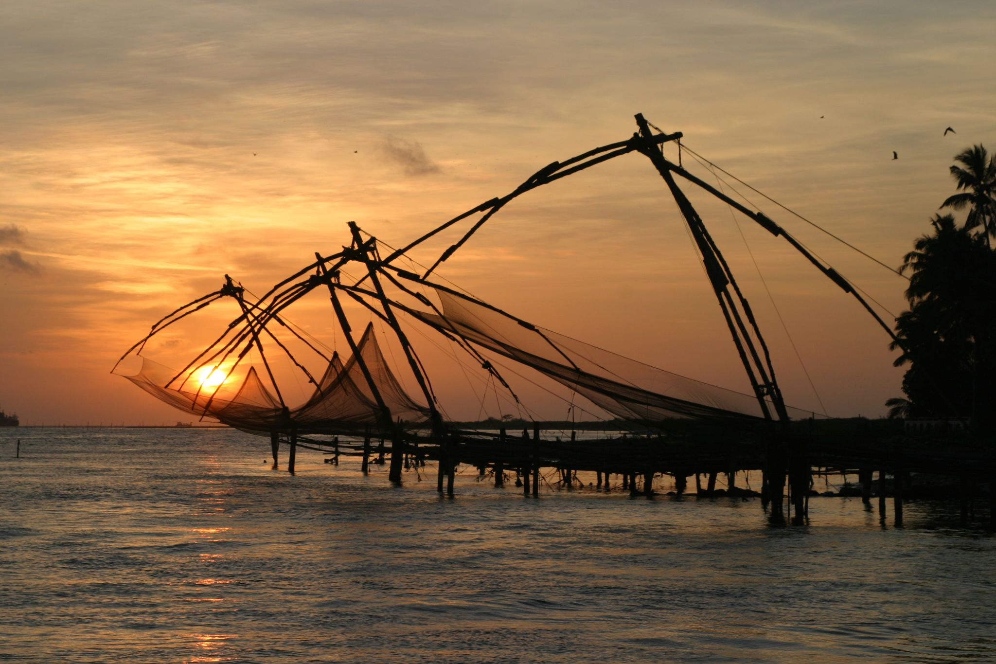 8 Best Place to Visit in Kochi
