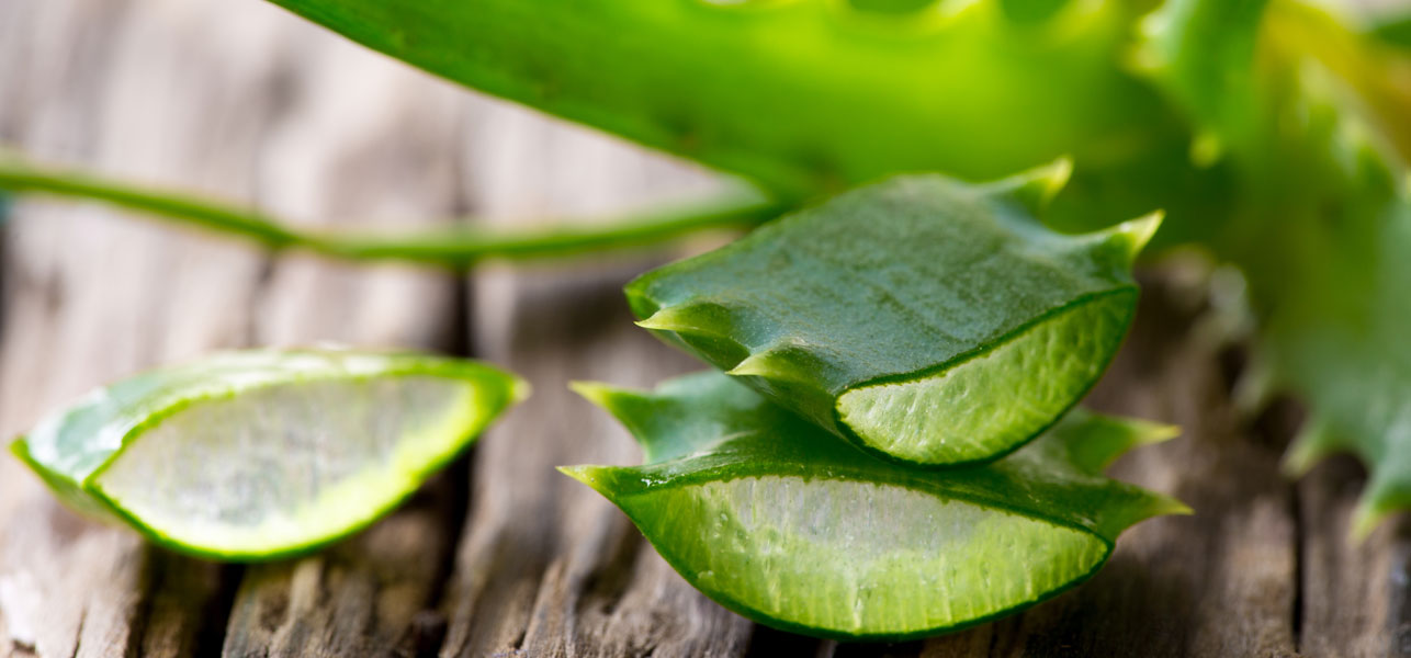 The benefits of Aloe Vera just for you.