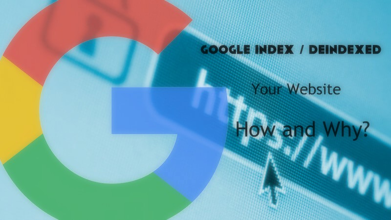 Google Index / Deindexed Your Website How and Why?