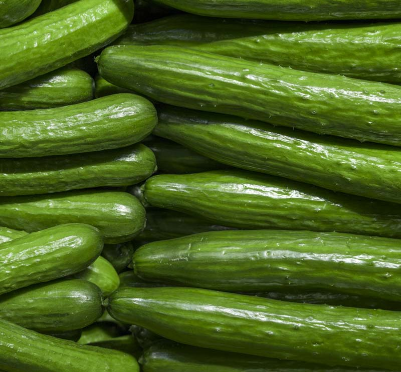 CUCUMBER HAVE ITS OWN BENEFITS